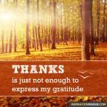 Express my Gratitude